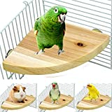 Onebook Wood Perch Bird Platform Pet Parrot Stand Wood Playground Cage Accessories Small Animals Rat Hamster Parakeet Finches Conure Cockatiel Budgie Gerbil Rat Mouse Lovebird Exercise Toys(17x17cm)