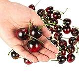 Juvale Artificial Cherries, Plastic Fruit