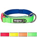 """Blueberry Pet 4 Colors Soft & Comfy Summer Hope 3M Reflective Padded Dog Collar with O-Ring, Fluorescent Green, Medium, Neck 14.5""""-18"""", Adjustable Collars for Dogs"""
