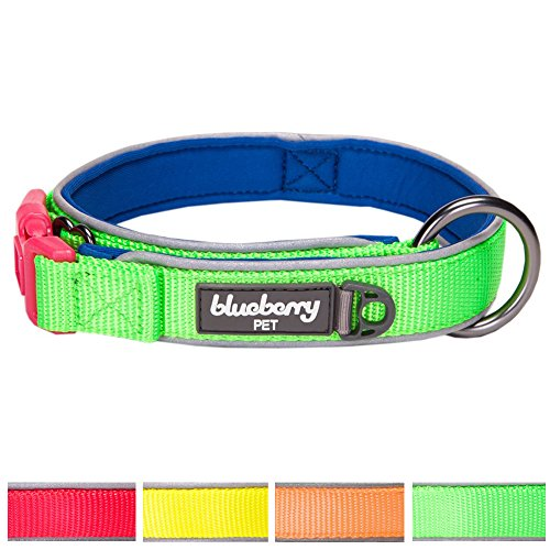 [Blueberry Pet 4 Colors Soft & Comfy Summer Hope 3M Reflective Padded Dog Collar with O-Ring, Fluorescent Green, Medium, Neck 14.5