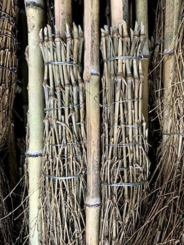 Reisigbesen aus Bambus Bambusbesen mit Stiel Stallbesen Anzahl 20 Bambusbesen