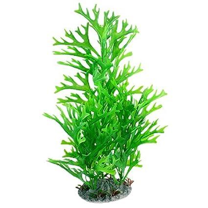Amazon.com : eDealMax Peces de plástico tanque realista hierba/planta del ornamento, 15.5 pulgadas : Pet Supplies
