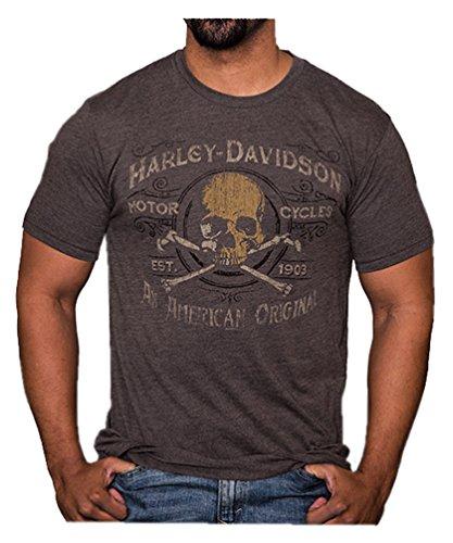 Harley Davidson Crossbones (Harley-Davidson Men's Boneyard Distressed Short Sleeve T-Shirt, Brown (M))