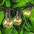 Monkeydg String Lights, G40 Outdoor String Lights Edison Light Bulbs Clear Globe Lights for Backyard Patio Lights Indoor/Outdoor Commercial Decoration -5 Watt/120 Voltage/E12 Base