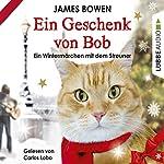 Ein Geschenk von Bob: Ein Wintermärchen mit dem Streuner | James Bowen
