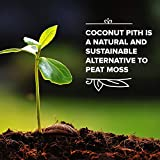 Triumph Plant Coco Coir Bricks - A Natural Additive to Potting Soil for Potted Plants & Gardens- Coconut Coir is a Sustainable Alternative to Peat Moss - Average Brick Size is 10 oz - 3 Bricks