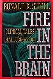 Fire in the Brain