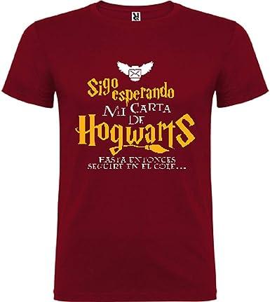 Camiseta Manga Corta niño/a Harry Potter Carta: Amazon.es: Ropa y accesorios