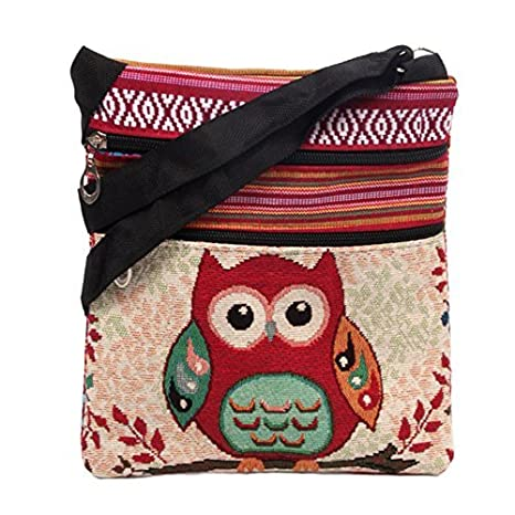 Amazon.com: aibearty Boho Búho Crossbody Bolsa de lona a ...