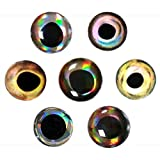549pcs Fishing Lure Eyes 3D Holographic Bait Rig Lure Eyes Multi Color&Size Fishing Eyes For Fly Tying, Jigs, Crafts, Dolls Fishing Tolls Accessories