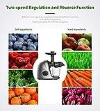 Juicer Machines, Jocuu Slow Juicer Masticating