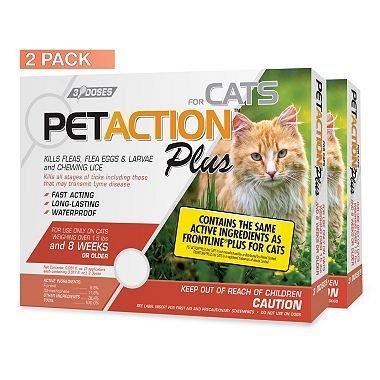 Amazon.com: petaction Plus para gatos (6 dosis) x2 como ...