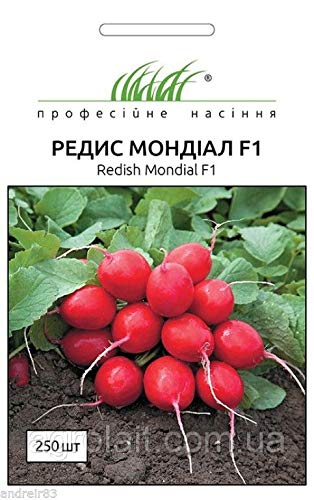 Portal Cool Seeds of Radish Mondial F1 250 Pcs Hem for sale  Delivered anywhere in Canada