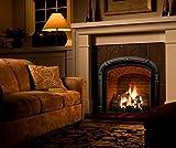 Natural Glo Large Gas Fireplace Logs | 10 Piece Set