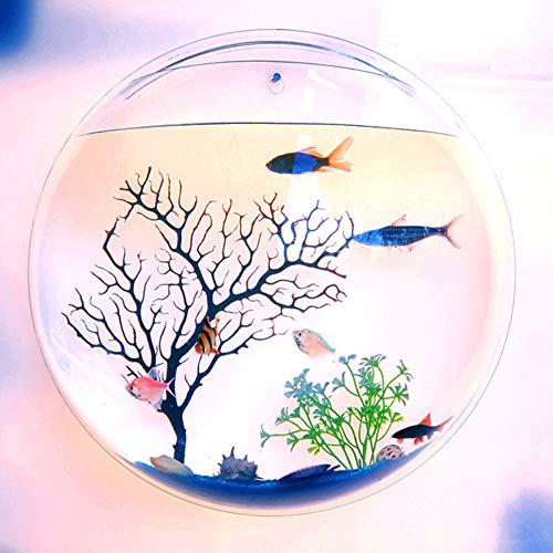 NORHOR Closed Aquatic Ecosystem,Hanging Wall Mounted Fish Bowl,Home Decoration Pot Wall Hanging Mount Plant Fish Bubble Aquarium Bowl Fish Tank Aquarium (Clear)