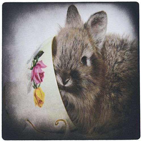 Lion Bunny (3dRose LLC 8 x 8 x 0.25 Inches Lion Head Bunny in a Teacup Mouse Pad (mp_6417_1))
