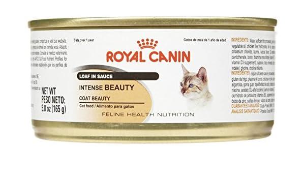 Amazon.com : Royal Canin Feline Health Nutrition Intense Beauty Loaf - 24x5.8 oz : Pet Supplies