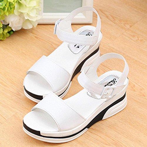 Sandalias de mujer, Internet Sandalias de verano de las mujeres zapatos sandalias de zapatos bajos Blanco