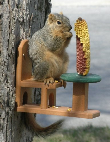 Songbird Essentials Recycled Squirrel Feeder