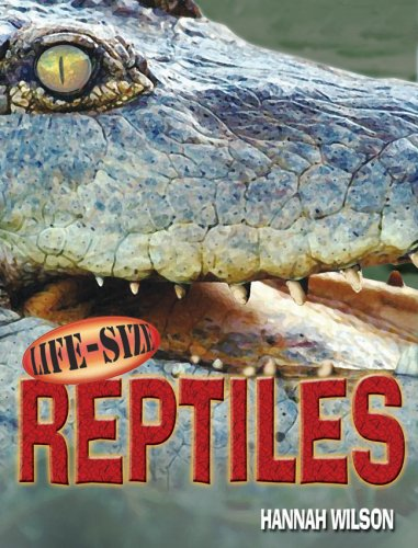 Reptile Life - Life-Size Reptiles (Life-Size Series)