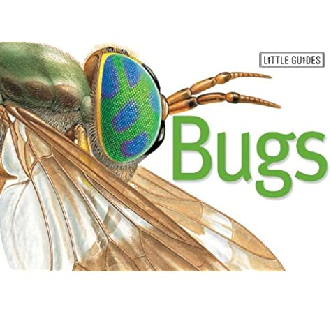 Bugs (Little Guides): Tait, Noel: 9781740893466: Amazon.com: Books