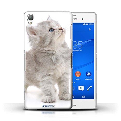 Kobalt® Imprimé Etui / Coque pour Sony Xperia Z3 / Chaton curieux conception / Série Chatons mignons