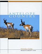 Antelope Country: Pronghorns: The Last Americans