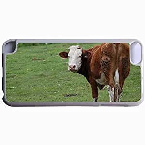 Customized Back Cover Case For iPod Touch 5 Hardshell Case, WHITE Back Cover Design Cow Personalized Unique Case For iPod Touch 5 hjbrhga1544