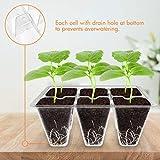 Gardzen 20-Set Garden Propagator Set, Clear Seed