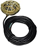 Little Giant 517414 L1C-50 Bronze and SST Underwater Light with 50-Feet Cord