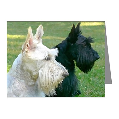 CafePress - Scottish Terriers - Blank Note Cards (Pack of 20) Matte by CafePress