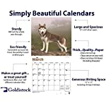 """Goldistock 2020 Large Wall Calendar -""""Siberian Huskies"""" - 12"""" x 24"""" (Open) - Thick & Sturdy Paper - - Fun-Loving and Outgoing Dogs 8"""