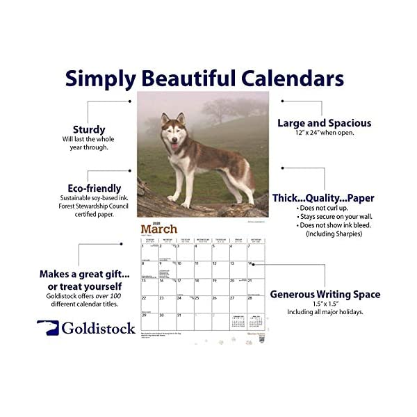 """Goldistock 2020 Large Wall Calendar -""""Siberian Huskies"""" - 12"""" x 24"""" (Open) - Thick & Sturdy Paper - - Fun-Loving and Outgoing Dogs 2"""