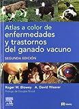 Atlas a Color de Enfermedades y Trastornos Del Ganado Vacuno 9788481747270