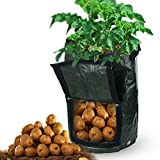2-Pack 10 Gallon Grow Bags Garden Potato Grow Bag Vegetables Planter Tub with Flap and Handles for Harvesting