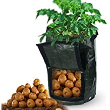 Garden Potato Grow Bags, 2-Pack 10 Gallon Vegetables Crop Planter Bags Waterproof Tub Pouch for Tomato, Carrot Onion