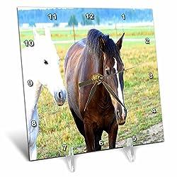 3dRose TDSwhite – Horse Equine Photos - Pasture Mates Equine Friends - 6x6 Desk Clock (dc_285531_1)