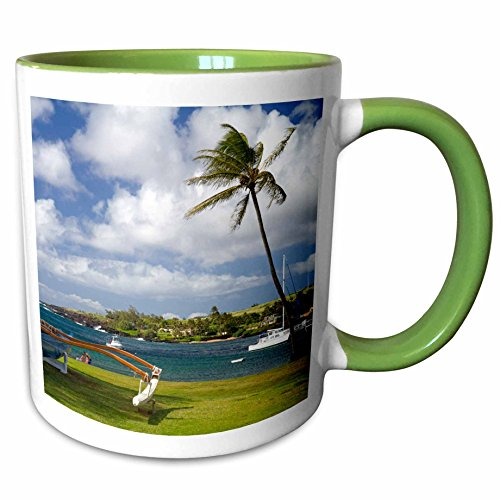 3dRose Danita Delimont - Hawaii - Kukuiula boat harbor, Kauai, Hawaii, USA - US12 DFR0131 - David R. Frazier - 11oz Two-Tone Green Mug - Hawaii Kukuiula