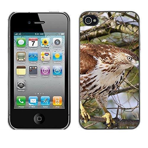 Premio Sottile Slim Cassa Custodia Case Cover Shell // F00017396 faucon // Apple iPhone 4 4S 4G