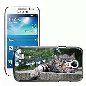 Super Stella Slim PC Hard Case Cover Skin Armor Shell Protection // M00107013 Cats Sleepy Kitten Animals Mammals // Samsung Galaxy S4 Mini i9190