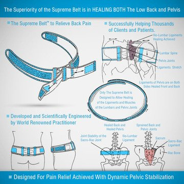 Supreme Lower Back Brace For Pain Support- Plus 5 Athletic Performance Herb Package- Improves Strength-Reduces Lumbar Pain-Improves Performance by Supreme Belts (Image #2)