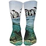 YUANSHAN Socks National Penguins Women & Men Socks Soccer Sock Sport Tube Stockings Length 11.8Inch