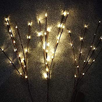 The Light Garden Wlwb96 Electric Corded Willow Branch With