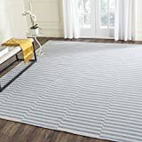 Safavieh Montauk Collection MTK715B Handmade Flatweave Ivory and Light Blue Cotton Area Rug (8' x 10')