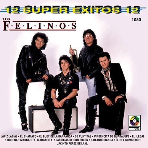 ... 12 Super Exitos 12 Felinos Vol.2
