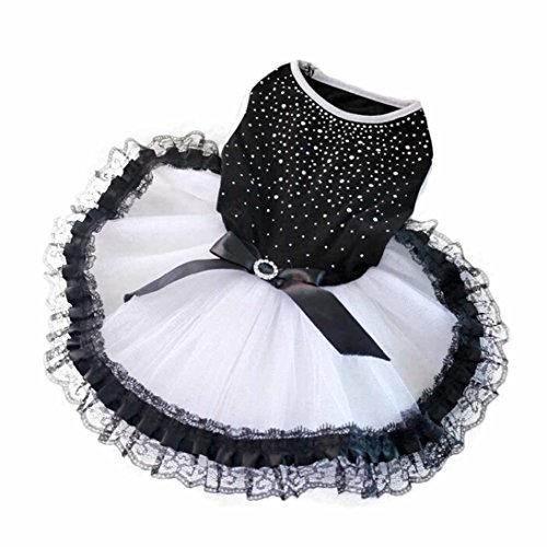Cute Girl Dog Costumes (HP95(TM) Fashion Pet Dog Puppy Tutu Dress Princess Fluffy wedding Lace Skirt Clothes Apparel (M))