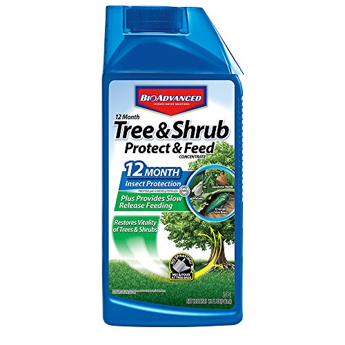 BioAdvanced 701901 12 Month Tree and Shrub Protect and Feed Concentrate, 32-Ounce