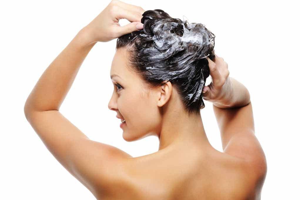 Amazon.com: LEHIT SHAMPOO FREE SULFATE COMPLEJO BIOLOGICO - ANTICAIDA HELP FALL HAIR Especial para la Keratina sin sal Made in Colombia: Beauty