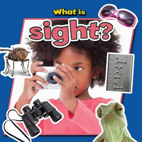 What Is Sight? (Senses Close-Up) PDF
