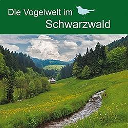 Die Vogelwelt im Schwarzwald